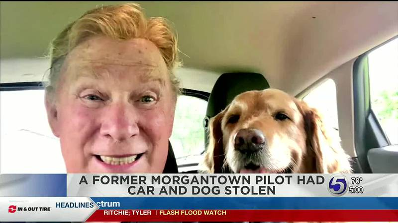 Lost car and dog