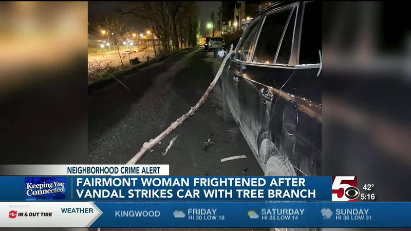 Fairmont Car Vandal