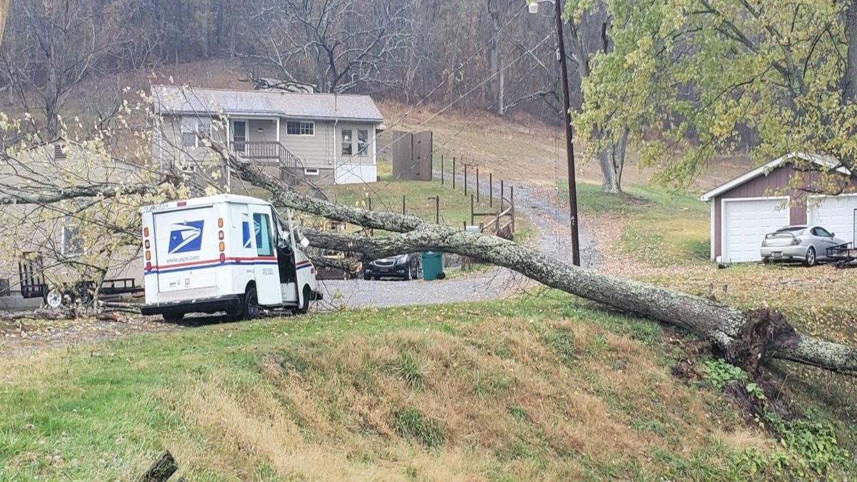 One person was taken to the hospital after a tree fell on to a United States Postal Service...