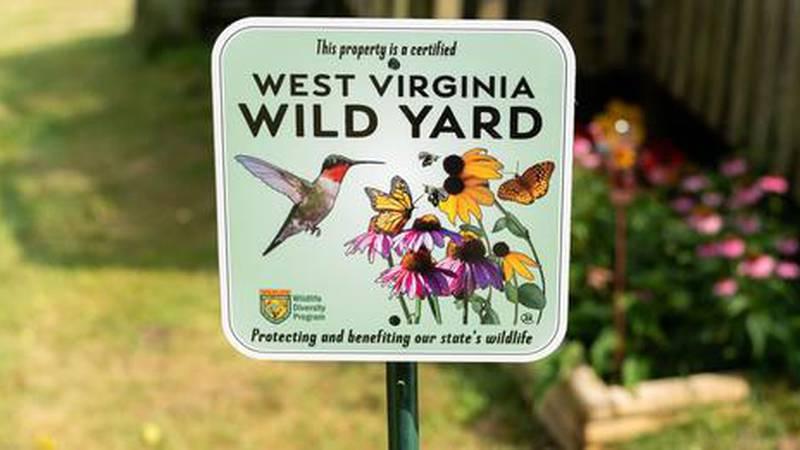 wv wild yards