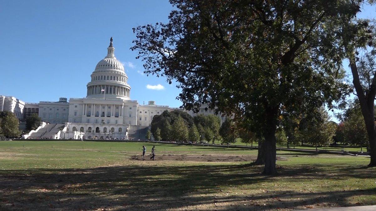Progressive candidates aim to flip a 'solid Republican' Senate seat. (Source: Gray DC)