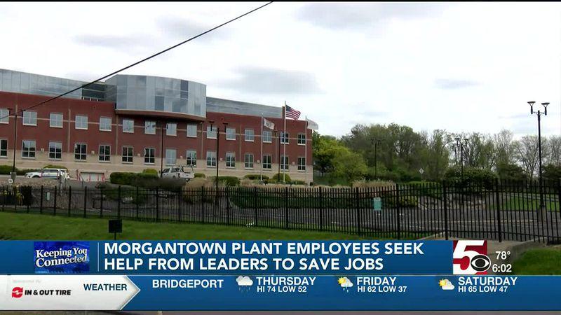 Mylan Plant employee