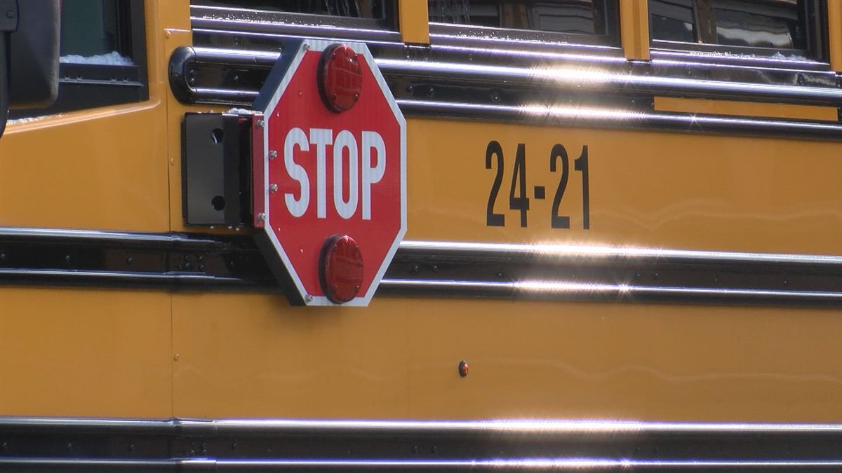 Hundreds of Lewis County students were forced to stay home Tuesday after nearly 20 bus drivers missed work. (Photo: WDTV)