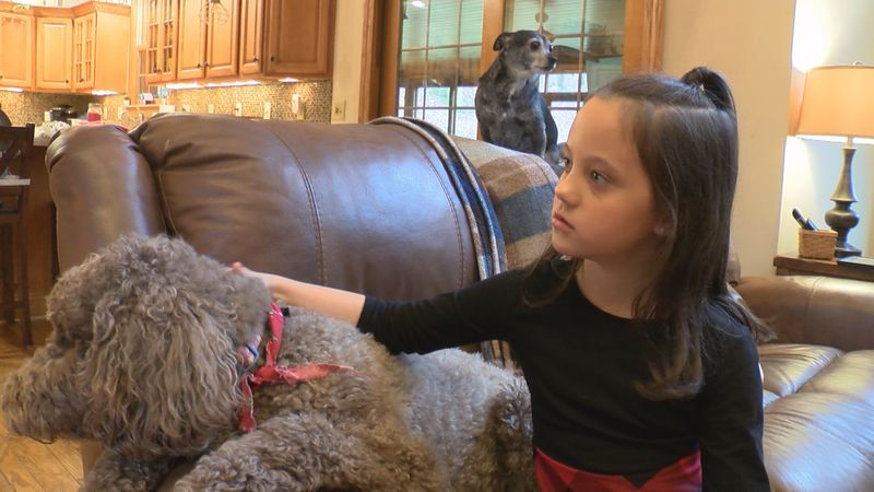 Little Miss West Virginia Rhododendron combined her love for animals and helping others by...
