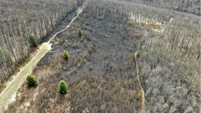 30.5 acres caught fire Tuesday night. The fire was contained early Wednesday morning.